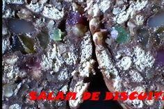 Reteta Salam de biscuiţi, reţetă video Sweets, Desserts, Tailgate Desserts, Deserts, Gummi Candy, Candy, Goodies, Postres, Dessert