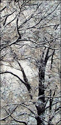 How can snow on trees look so beautiful shot in white and black? Oh, but it does! - Pinned by Laurie Ashbach onto Collage from laurabreitman.com