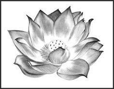 Blossom and Rebirth by ~Maita1 on deviantART
