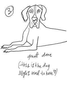 Great Dane  copyright Alanna Cavanagh 2013  #Dog illustration
