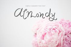 Almondy Fonts Thanks for checking out Almondy! A handwritten elegant script font with a whimsical vibe. Almondy is by Sweet Louise Paper Co.