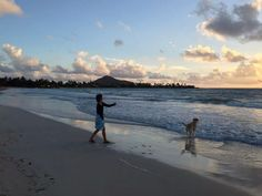 Sunrise! My Lab loves the beach, what's not to love?!