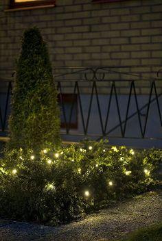 #kerstverlichting #tuin