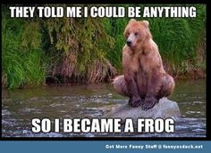 Funny Animal Pictures With Captions | Froggy Bear | Funny As Duck | Funny Pictures