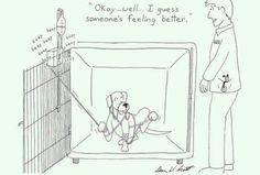 World of a vet tech...