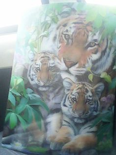 Got this from knosley safari park
