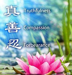 """""""At the core of Falun Gong are the values of truth, compassion, and forbearance (or in Chinese, Zhen, Shan, Ren). Falun Dafa teaches that these are the most fundamental qualities of the universe."""""""
