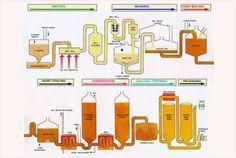 SUPER SCIENCE beer brewing info