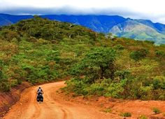Facing our giants in Eden    Ricolette von Wielligh and her husband depart on an epic multi-thousand kilometre Do It Yourself cycle tour through Africa!  #epic #adventure #cycling #DIY #Africa #RicolettevonWielligh #DoITNowMagazine