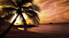 FREE PHOTOS OF BEACHES AN WHITE SAN | National Geographic Nature Full HD Wallpaper