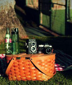 A picnic, a camera, & a Coca-Cola