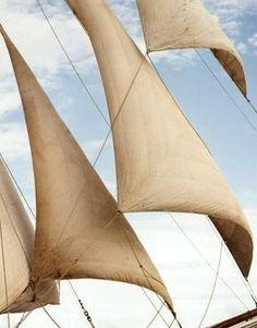Sail | richardphibbsfineart.com