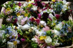 jam jar posies - early june in the garden we have all these goodies.  grown, cut and tied by @theflowerfarmer at www.commonfarmflowers.com