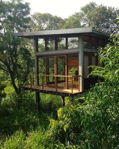 The glass treehouse in Sri Lanka  #treehouse #greenarchitecture #sustainable #fsc #microarchitecture #naturalliving #sustainabledesign #greenbuilding #treehousemasters #organic #campouts #treehouses #tinyhouse #treehouselife #greenliving...
