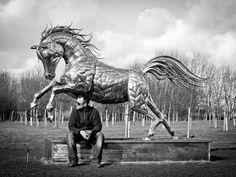 Michael Turner cbp_horse_44