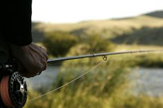 Fly Rods Birch Bark And Birches On Pinterest