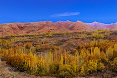 Landscape by altangokcek. Please Like http://fb.me/go4photos and Follow @go4fotos Thank You. :-)