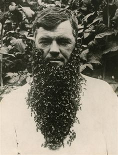 the most fashionable of facial hair styles