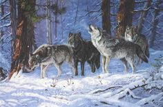 """Terry Doughty - """"The Haunters of the Silences"""""""