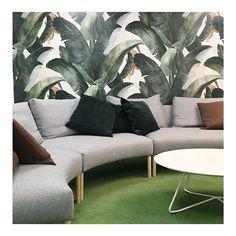 Meeting room Keidas. 🌱#mywork #maruhautala #lempipaikkoja