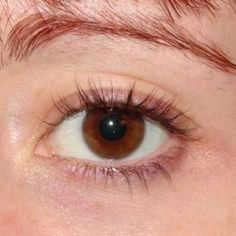 After just 4 weeks of #RapidLash I have thicker, fuller eyelashes. Click the pic to read more! #IC #sponsored #ad