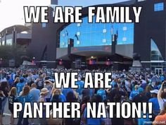 How long have you been in Panther Nation? Panthers Football Team, Fall Football, Football Love, Football Memes, Panther Football, Football Season, Carolina Pathers, Carolina Pride, Panther Country