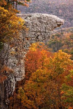 Hawksbill Crag      Buffalo River   Arkansas