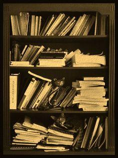 gat@s, libros