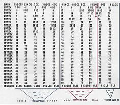 Www Maltiuppies Us Maltipoo Puppies For Weight Chart