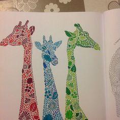 #ShareIG #girafes#giraffe#coloriageadultes#animauxfantastiques#antistress
