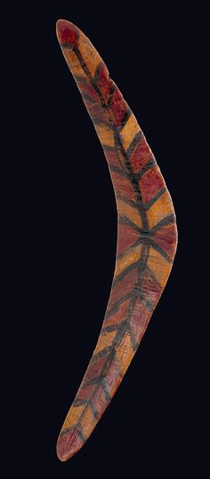 Boomerang from north queensland