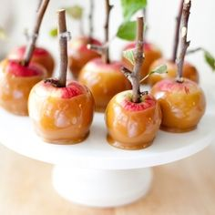 Mini Caramel Apples made with real apple twigs. Such a fun fall treat and the perfect size.