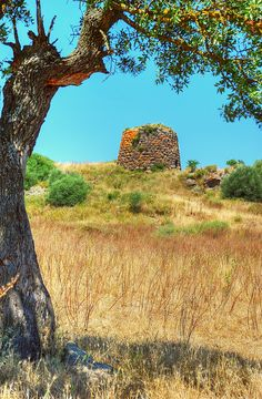 Near Bagni Oddini, Nuoro Sardinia, a Nuraghe in good condition. 3500 year old neolithic construction of massive size.