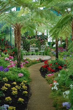 Garden Ideas Backyard Landscaping Before starting a landscaping project there are many factors that need to be taken into consideration. It is important for a garden to have a soothing and peaceful… Most Beautiful Gardens, Beautiful Flowers Garden, Amazing Gardens, Beautiful Landscape Wallpaper, Beautiful Landscapes, Beautiful Nature Pictures, Tropical Garden, Tropical Plants, Exotic Plants