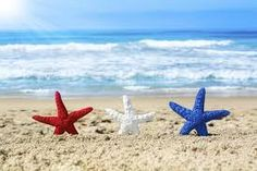 Conceptual summer holiday image of three red, white and blue starfish on the beach overlooking a turquoise ocean while celebrating the july fourth holiday. Memorial Day, 4th Of July Wallpaper, 4th Of July Images, Beach Bag Essentials, Myrtle Beach Hotels, July Events, Banner, Holiday Images, Holiday Pics