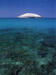 Isla Gaviota Baja California Mexico