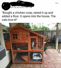 Spoiled Kitten - World's largest collection of cat memes and other animals Outdoor Cat Enclosure, Diy Cat Tree, Cat Hacks, Cat Room, Outdoor Cats, Animal Projects, Pet Life, Cat Memes, Memes Humor