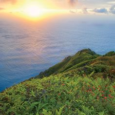 Pitcairn Islands Adamstown Pesquisa Do Google Dream Places - Pitcairn island one beautiful places earth