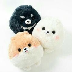 Cutest things EVER!!!!!!!!