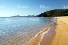 The Golden Sands of in the Abel Tasman National Park, Stockphoto available in my Portfolio for Find Link in Bio. Abel Tasman National Park, Y Image, Kiwiana, New Zealand, National Parks, Commercial, Stock Photos, Digital, Beach