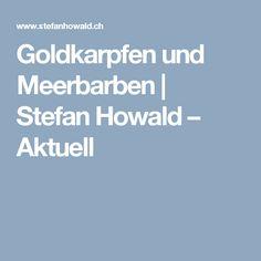 Goldkarpfen und Meerbarben   Stefan Howald – Aktuell