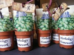 Harry Potter loot/party bag filler    Or just buy little plants for people to take home for herbology homework..