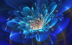 Abstract Fractal Flower wallpaper - yxwdo1