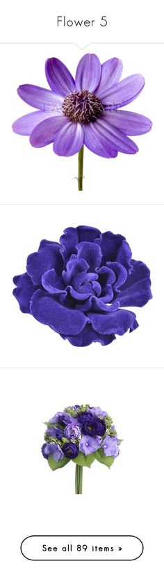 """Flower 5"" by luanacarvalho ❤ liked on Polyvore featuring flowers, purple, purple flower, filler, jewelry, brooches, accessories, brooch, fillers and multiple"