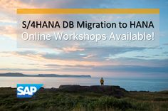 S/4HANA launch has started a journey for the SAP Community that will innovate the landscape and make the impossible possible for our customers. In order to be in the driver seat on this journey, you as a Partner have a clear call to action to own and master HANA Platform and the Migration from legacy DB to HANA.