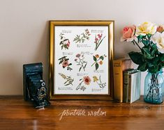 Hey, I found this really awesome Etsy listing at https://www.etsy.com/listing/152567894/digital-print-art-vintage-wildflowers