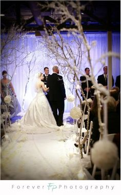 Winter Wedding Decor :  wedding winter wonderland silver ceremony reception Winter Wonderland Wedding.----------->love the back of her dress!!