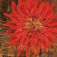 Floral Frenzy Red III Painting Print on Wrapped Canvas