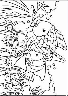 malvorlagen fische gratis zum drucken ausmalbild fische malvorlage fische ausmalbilder kostenlos