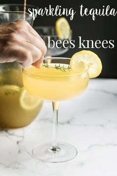 A twist on the classic bees knees cocktail. With tequila and sparkling wine, this honeyed lemon cocktail is more like a bee sting! It's strong, sweet, sour,bubbly and made in a pitcher so its easy to serve when you have guests. A dangerously good combination! #cookswithcocktails #beesknees #lemoncocktail #pitcherdrinks